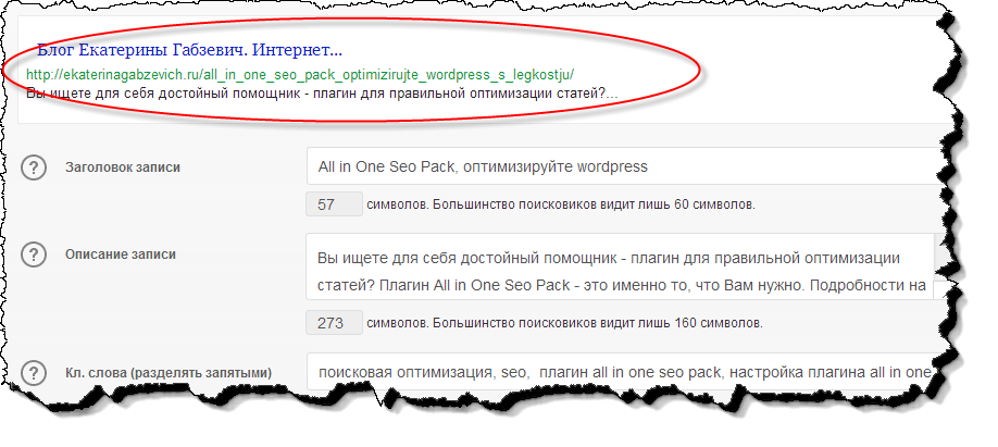 plagin_all_in_one_seo_pack_15